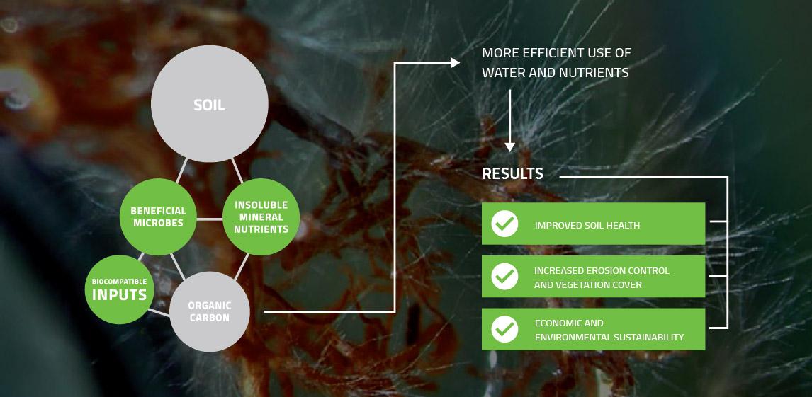 BioGrowth Diagram