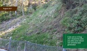 EnviroStraw Case Study Lamington National Park, QLD